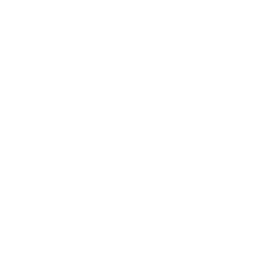 Society of American Archivists: Accessibility & Disability Section